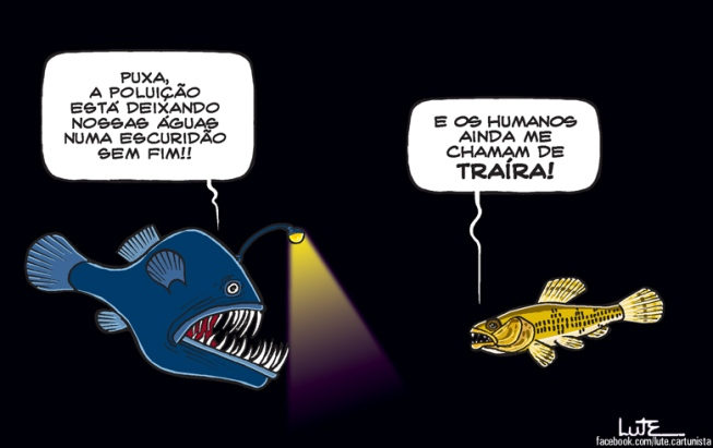 Charge do dia 12/01/2019